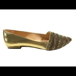 Ipanema Flat Pointed toe shoe